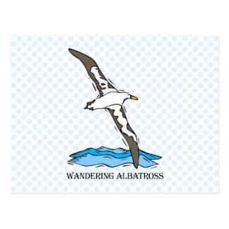Anrie Albatross Postcard