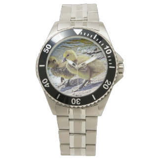 Ansarones en la orilla del lago relojes de pulsera