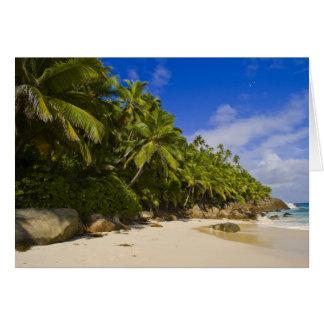 Anse Victorin Beach 3 Card