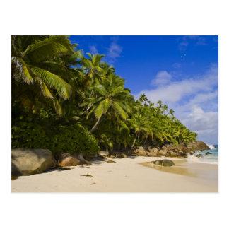 Anse Victorin Beach 3 Postcard