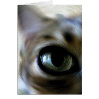 Ansel's Eye Card