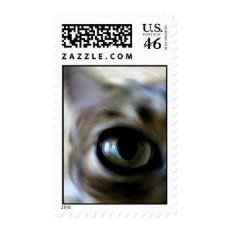 Ansel's Eye Stamp