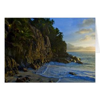 Ansi Victorin Beach 2 Card