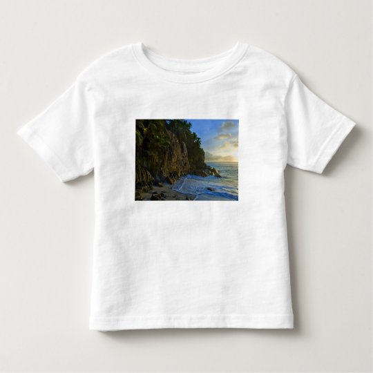 Ansi Victorin Beach 2 Toddler T-shirt