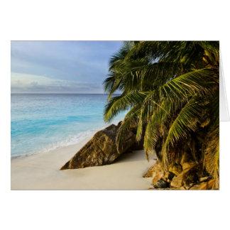 Ansi Victorin Beach Card