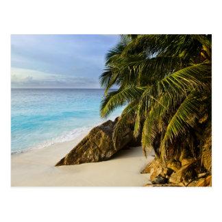 Ansi Victorin Beach Postcard
