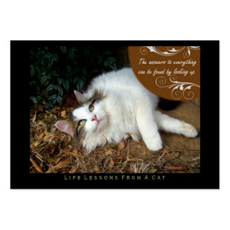 Answers Life Lessons From a Cat ACEO Art Cards Business Card
