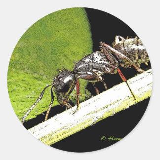 ant b classic round sticker