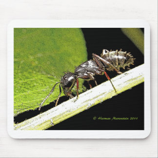 ant b mouse pad