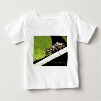 ant b shirt