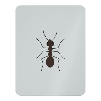 Ant Card
