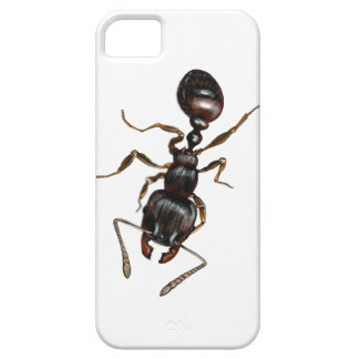 Ant Case-Mate Barely There iPhone 5 5S Case