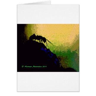 ant e card