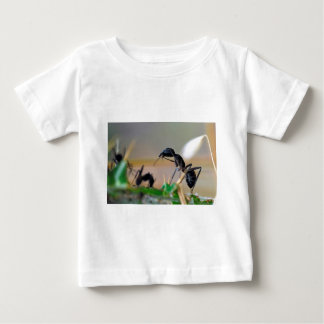 Ant eating insect t-shirt