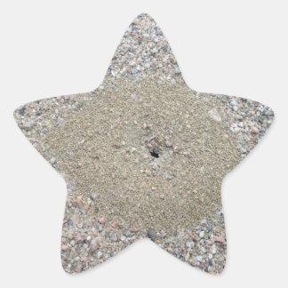 Ant Hill Star Sticker
