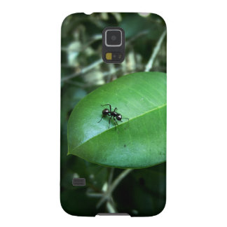 Ant & Leaf Phone Case Galaxy S5 Cases