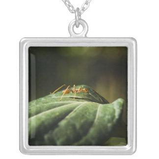Ant Square Pendant Necklace