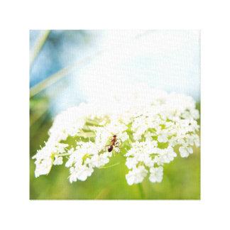 Ant on Flower Canvas Print
