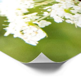 Ant on White Flower Poster
