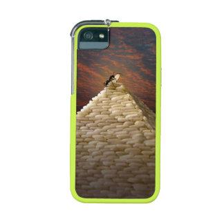 Ant (Pharaoh's Inspiration) iPhone 5 Case