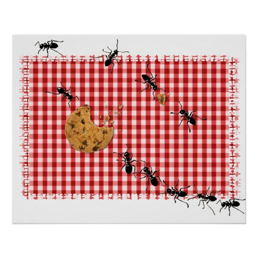 Ant Picnic Poster