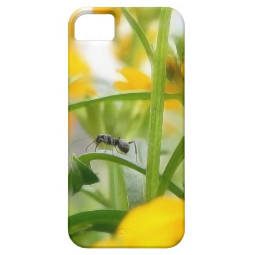 Ant Portrait With Siberian Wallflowers iPhone 5 Cover