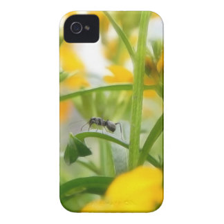Ant Portrait With Siberian Wallflowers Case-Mate iPhone 4 Cases