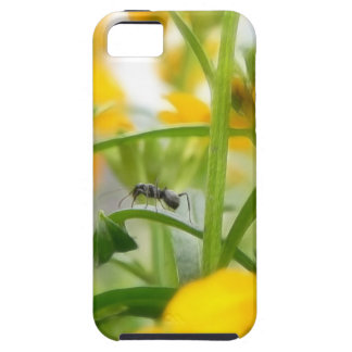 Ant Portrait With Siberian Wallflowers iPhone SE/5/5s Case