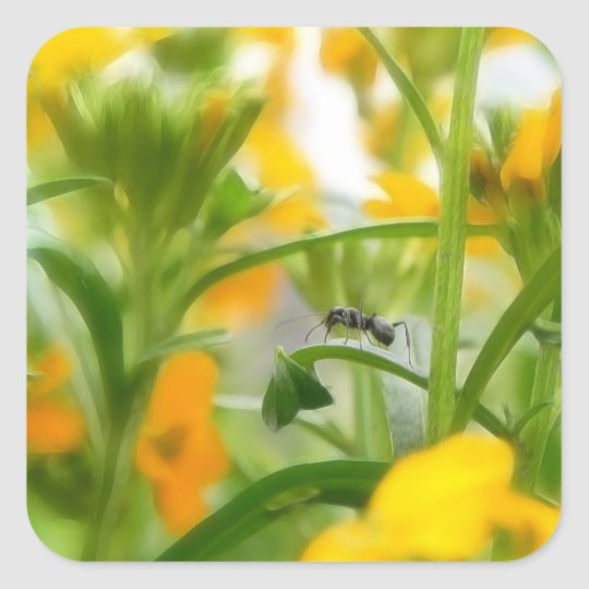 Ant Portrait With Siberian Wallflowers Square Sticker