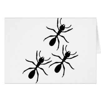 ant trail card
