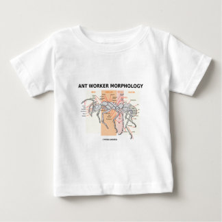Ant Worker Morphology Baby T-Shirt