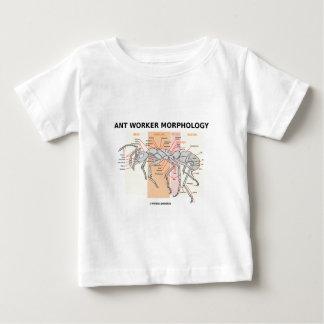 Ant Worker Morphology Infant T-shirt