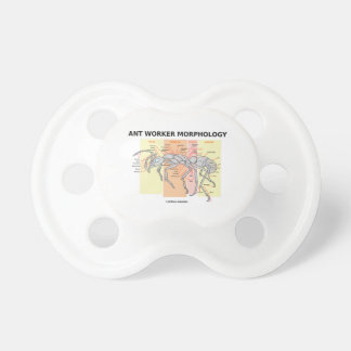 Ant Worker Morphology (Worker Ant Entomology) Pacifier