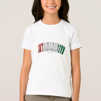 Antananarivo in Madagascar national flag colors T-Shirt