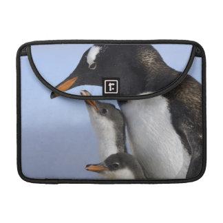 Antarctic Peninsula, Neko Harbour, Gentoo MacBook Pro Sleeves