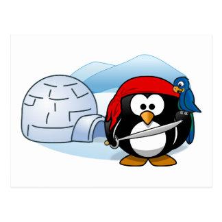 Antarctic Pitate Penguin Postcard