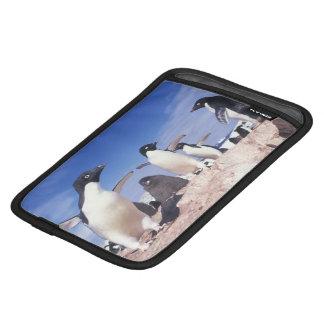 Antarctica, Adelie Penguin Pygoscelis Sleeve For iPad Mini