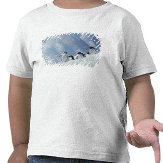 Antarctica. Adelie penguins T Shirt