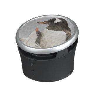 Antarctica, Aitcho Island. Gentoo penguin chick Bluetooth Speaker