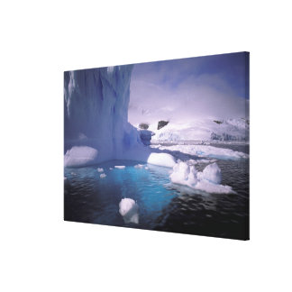 Antarctica. Antarctic icescapes 2 Canvas Print