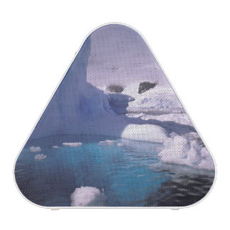 Antarctica. Antarctic icescapes 2 Speaker