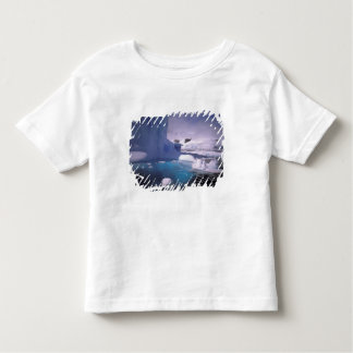 Antarctica. Antarctic icescapes 2 Toddler T-shirt