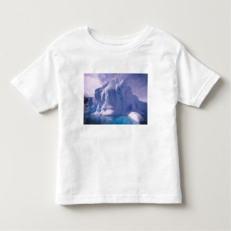Antarctica. Antarctic icescapes Toddler T-shirt