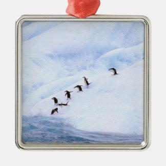 Antarctica, Antarctic Peninsula. Chinstrap Metal Ornament