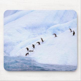Antarctica, Antarctic Peninsula. Chinstrap Mouse Pad