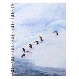 Antarctica, Antarctic Peninsula. Chinstrap Spiral Notebook