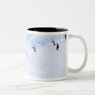 Antarctica, Antarctic Peninsula. Chinstrap Two-Tone Coffee Mug