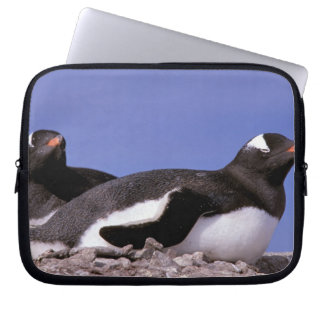 Antarctica, Antarctic Peninsula, Peterman Laptop Sleeve