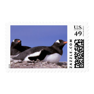 Antarctica, Antarctic Peninsula, Peterman Postage Stamps