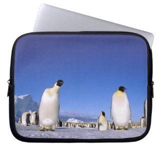Antarctica, Antarctic Peninsula, Weddell Sea, 3 Laptop Computer Sleeve
